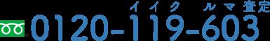 0120-119-603