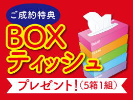 ご成約特典 BOXティッシュプレゼント!(5箱1組)